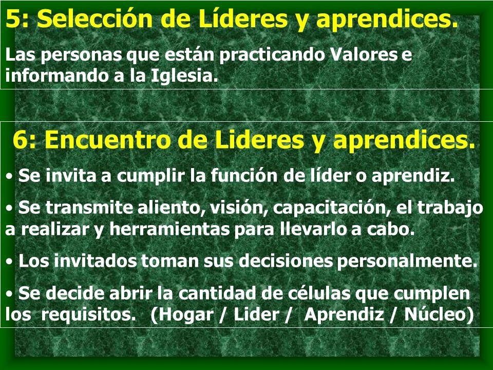 5: Selección de Líderes y aprendices.