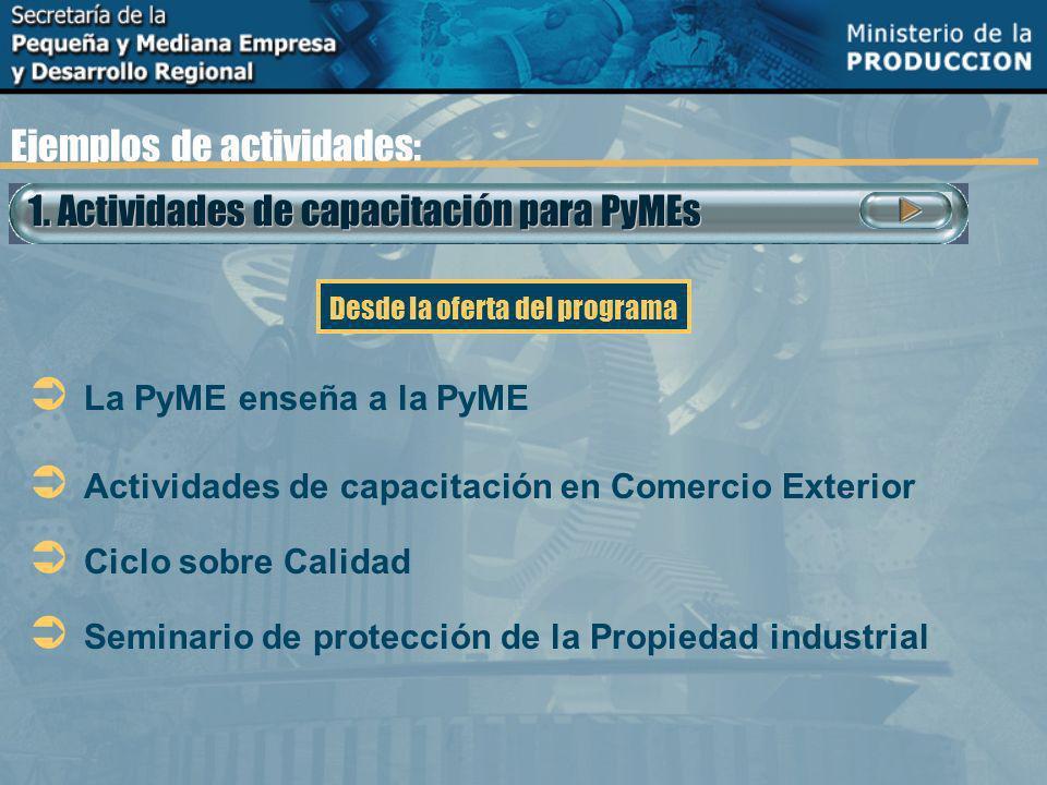 1. Actividades de capacitación para PyMEs Ejemplos de actividades: La PyME enseña a la PyME Actividades de capacitación en Comercio Exterior Ciclo sob