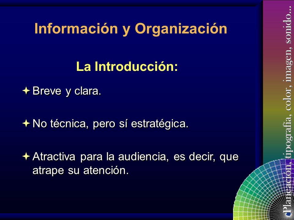 Planeación, tipografía, color, imagen, sonido… Información y Organización Introducción. Contenido sustancial. Resumen y cierre. Introducción. Contenid