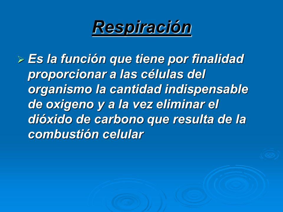 Respiración Es la función que tiene por finalidad proporcionar a las células del organismo la cantidad indispensable de oxigeno y a la vez eliminar el