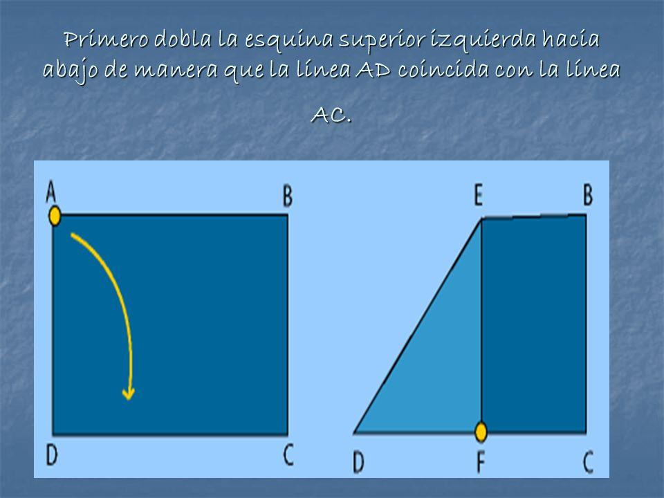 Primero dobla la esquina superior izquierda hacia abajo de manera que la línea AD coincida con la línea AC.