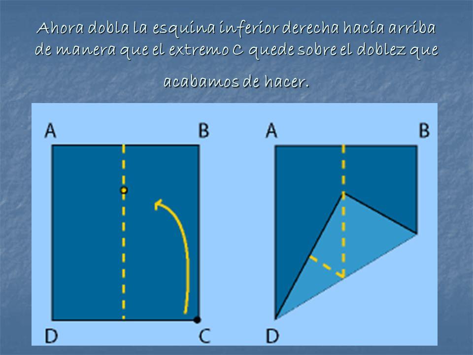 Ahora dobla la esquina inferior derecha hacia arriba de manera que el extremo C quede sobre el doblez que acabamos de hacer.