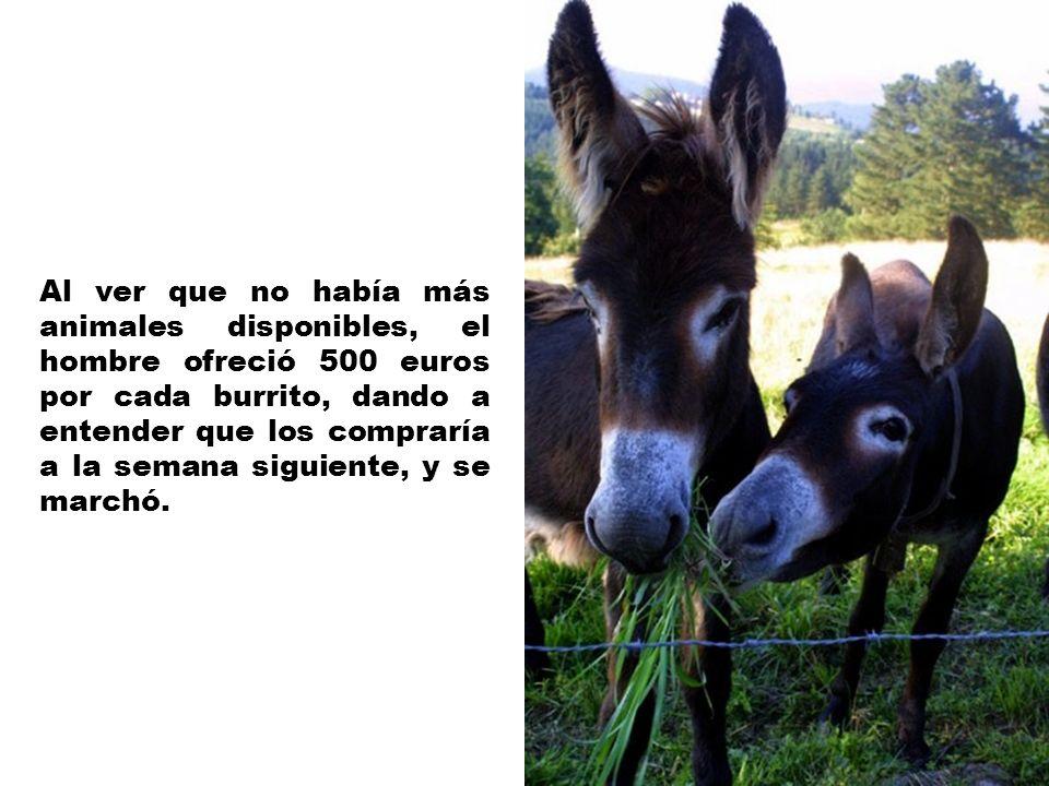 Volvió un día después y ofreció 300 euros. El resto de la gente vendió los últimos burros.