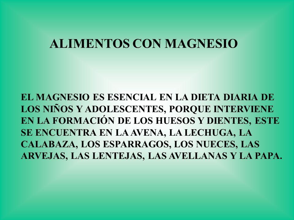 EL MAGNESIO ES ESENCIAL EN LA DIETA DIARIA DE LOS NIÑOS Y ADOLESCENTES, PORQUE INTERVIENE EN LA FORMACIÓN DE LOS HUESOS Y DIENTES, ESTE SE ENCUENTRA E