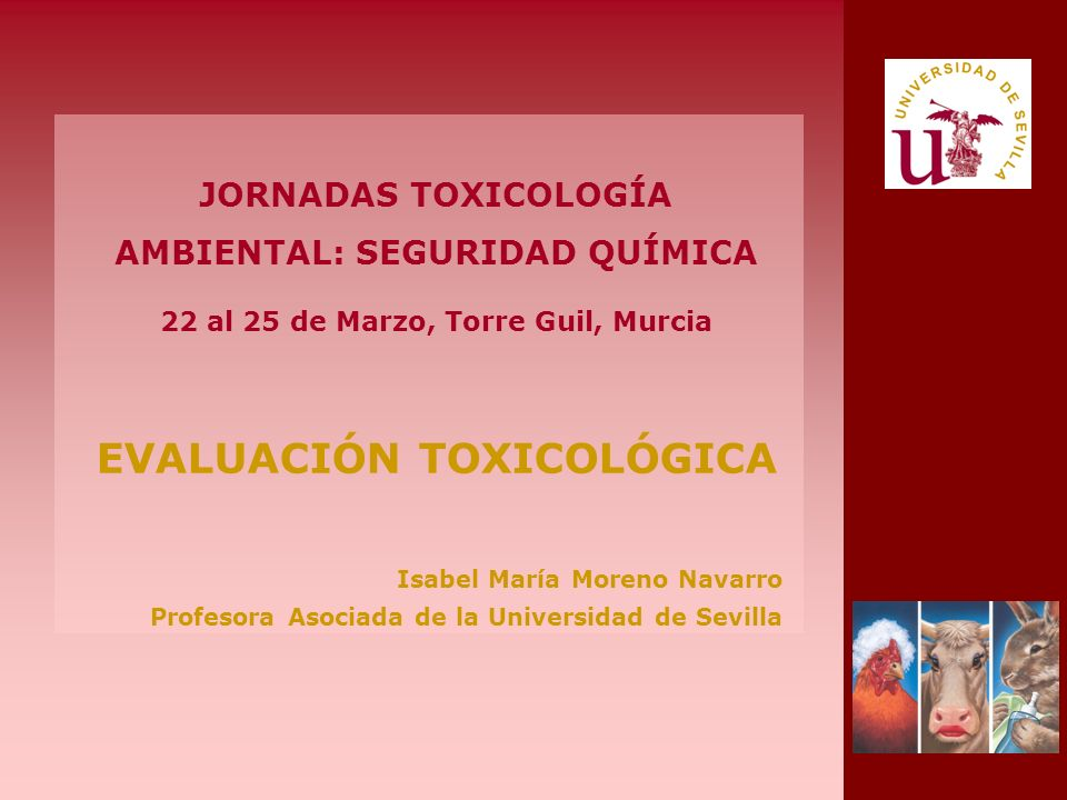 JORNADAS TOXICOLOGÍA AMBIENTAL: SEGURIDAD QUÍMICA 22 al 25 de Marzo, Torre Guil, Murcia EVALUACIÓN TOXICOLÓGICA Isabel María Moreno Navarro Profesora Asociada de la Universidad de Sevilla
