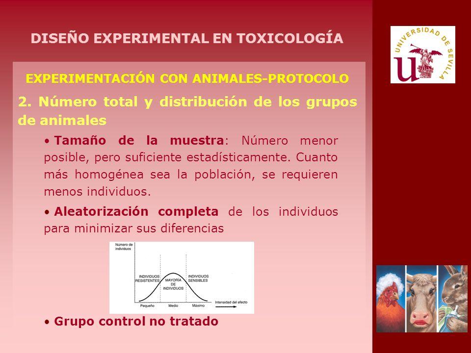 EXPERIMENTACIÓN CON ANIMALES-PROTOCOLO 2. Número total y distribución de los grupos de animales Tamaño de la muestra: Número menor posible, pero sufic