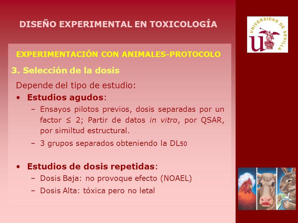 EXPERIMENTACIÓN CON ANIMALES-PROTOCOLO 3. Selección de la dosis Depende del tipo de estudio: Estudios agudos: –Ensayos pilotos previos, dosis separada