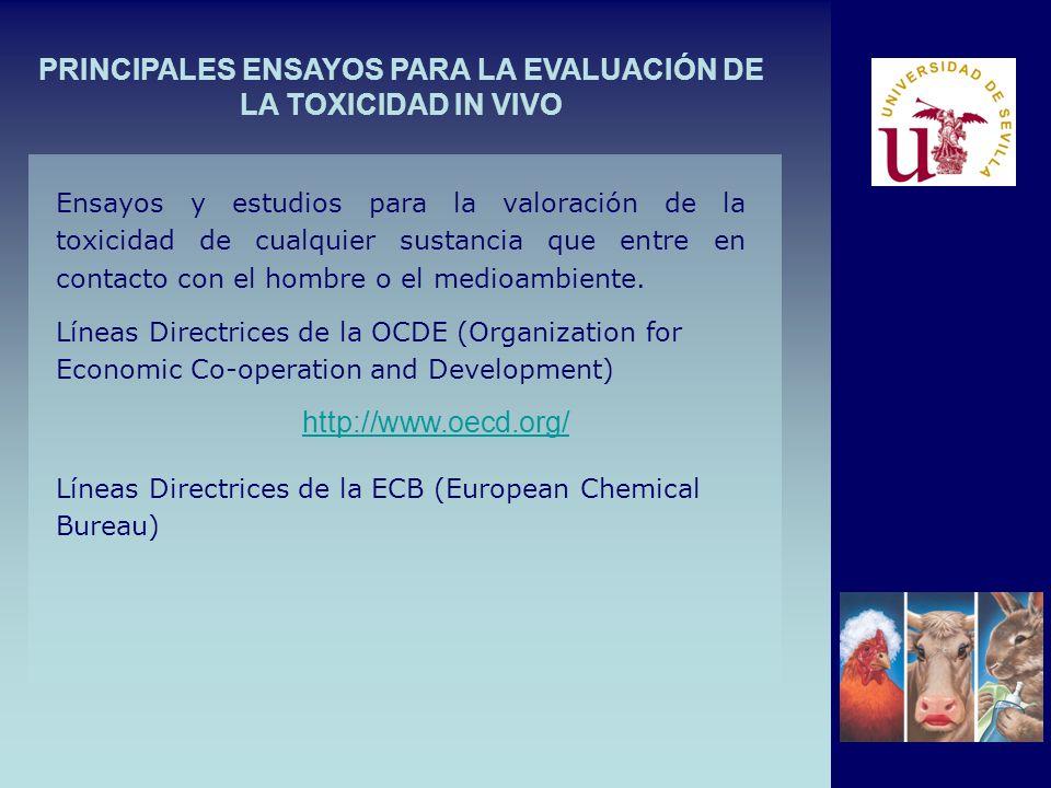 PRINCIPALES ENSAYOS PARA LA EVALUACIÓN DE LA TOXICIDAD IN VIVO Ensayos y estudios para la valoración de la toxicidad de cualquier sustancia que entre