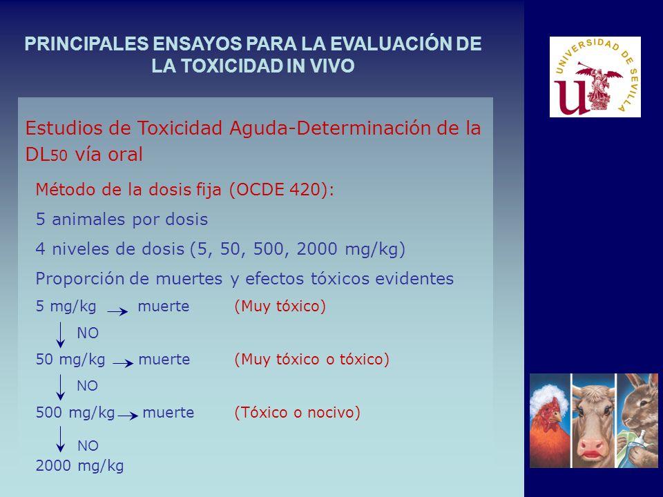 PRINCIPALES ENSAYOS PARA LA EVALUACIÓN DE LA TOXICIDAD IN VIVO Método de la dosis fija (OCDE 420): 5 animales por dosis 4 niveles de dosis (5, 50, 500, 2000 mg/kg) Proporción de muertes y efectos tóxicos evidentes 5 mg/kg muerte(Muy tóxico) NO 50 mg/kg muerte(Muy tóxico o tóxico) NO 500 mg/kg muerte(Tóxico o nocivo) 2000 mg/kg Estudios de Toxicidad Aguda-Determinación de la DL 50 vía oral NO