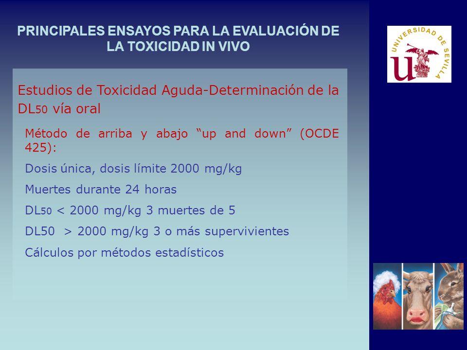 PRINCIPALES ENSAYOS PARA LA EVALUACIÓN DE LA TOXICIDAD IN VIVO Método de arriba y abajo up and down (OCDE 425): Dosis única, dosis límite 2000 mg/kg Muertes durante 24 horas DL 50 < 2000 mg/kg 3 muertes de 5 DL50 > 2000 mg/kg 3 o más supervivientes Cálculos por métodos estadísticos Estudios de Toxicidad Aguda-Determinación de la DL 50 vía oral