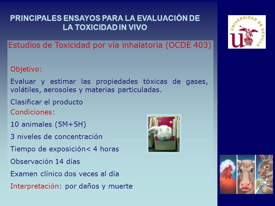 PRINCIPALES ENSAYOS PARA LA EVALUACIÓN DE LA TOXICIDAD IN VIVO Estudios de Toxicidad por vía inhalatoria (OCDE 403) Objetivo: Evaluar y estimar las propiedades tóxicas de gases, volátiles, aerosoles y materias particuladas.