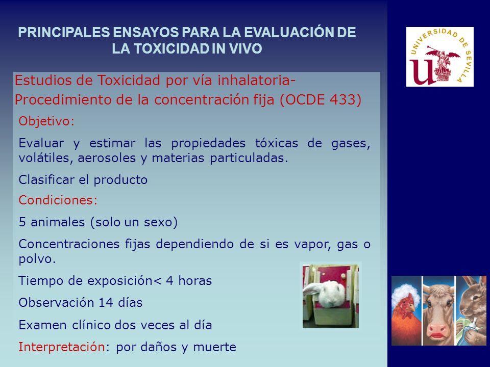 PRINCIPALES ENSAYOS PARA LA EVALUACIÓN DE LA TOXICIDAD IN VIVO Estudios de Toxicidad por vía inhalatoria- Procedimiento de la concentración fija (OCDE