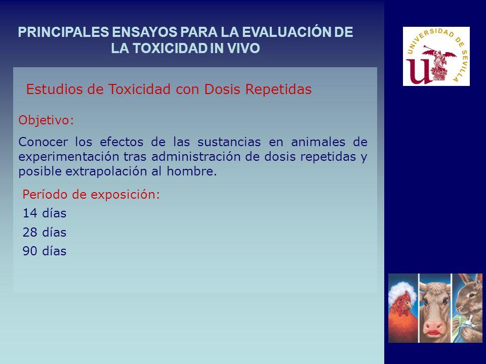 PRINCIPALES ENSAYOS PARA LA EVALUACIÓN DE LA TOXICIDAD IN VIVO Estudios de Toxicidad con Dosis Repetidas Objetivo: Conocer los efectos de las sustanci