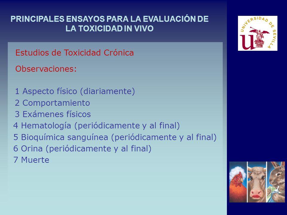 PRINCIPALES ENSAYOS PARA LA EVALUACIÓN DE LA TOXICIDAD IN VIVO Estudios de Toxicidad Crónica Observaciones: 1 Aspecto físico (diariamente) 2 Comportam
