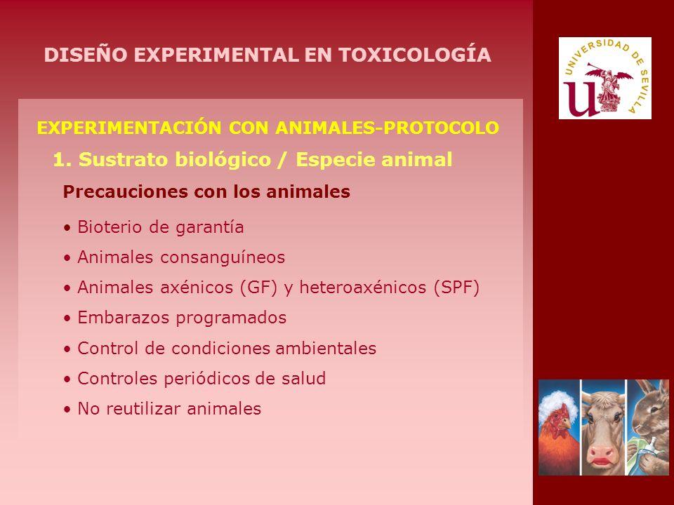 EXPERIMENTACIÓN CON ANIMALES-PROTOCOLO 1. Sustrato biológico / Especie animal Precauciones con los animales Bioterio de garantía Animales consanguíneo