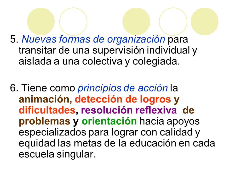5. Nuevas formas de organización para transitar de una supervisión individual y aislada a una colectiva y colegiada. 6. Tiene como principios de acció