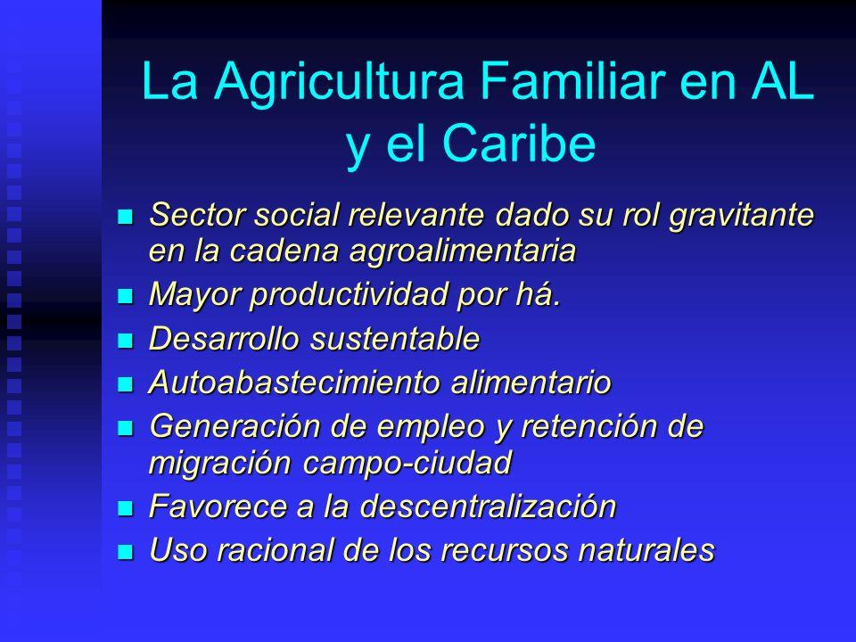 La Agricultura Familiar en AL y el Caribe Sector social relevante dado su rol gravitante en la cadena agroalimentaria Sector social relevante dado su rol gravitante en la cadena agroalimentaria Mayor productividad por há.