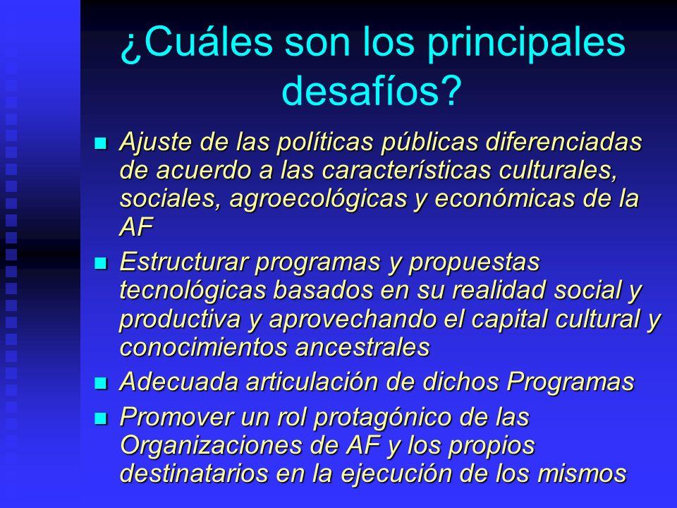 ¿Cuáles son los principales desafíos? Ajuste de las políticas públicas diferenciadas de acuerdo a las características culturales, sociales, agroecológ