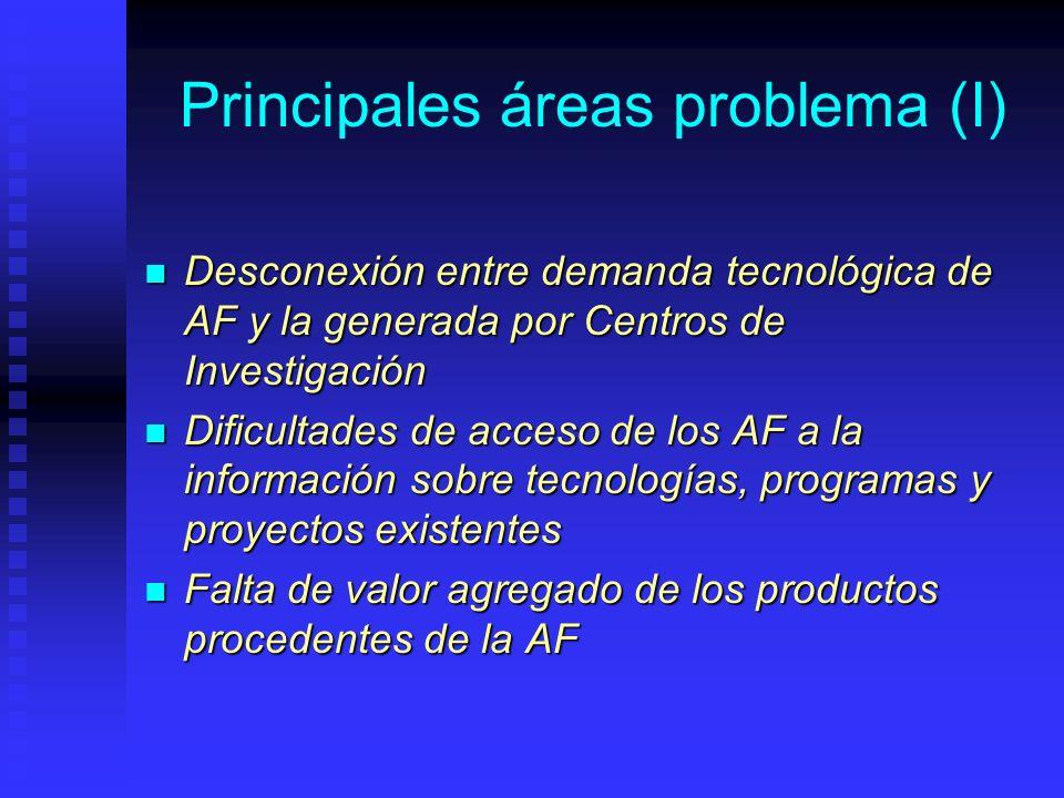 Principales áreas problema (I) Desconexión entre demanda tecnológica de AF y la generada por Centros de Investigación Desconexión entre demanda tecnológica de AF y la generada por Centros de Investigación Dificultades de acceso de los AF a la información sobre tecnologías, programas y proyectos existentes Dificultades de acceso de los AF a la información sobre tecnologías, programas y proyectos existentes Falta de valor agregado de los productos procedentes de la AF Falta de valor agregado de los productos procedentes de la AF