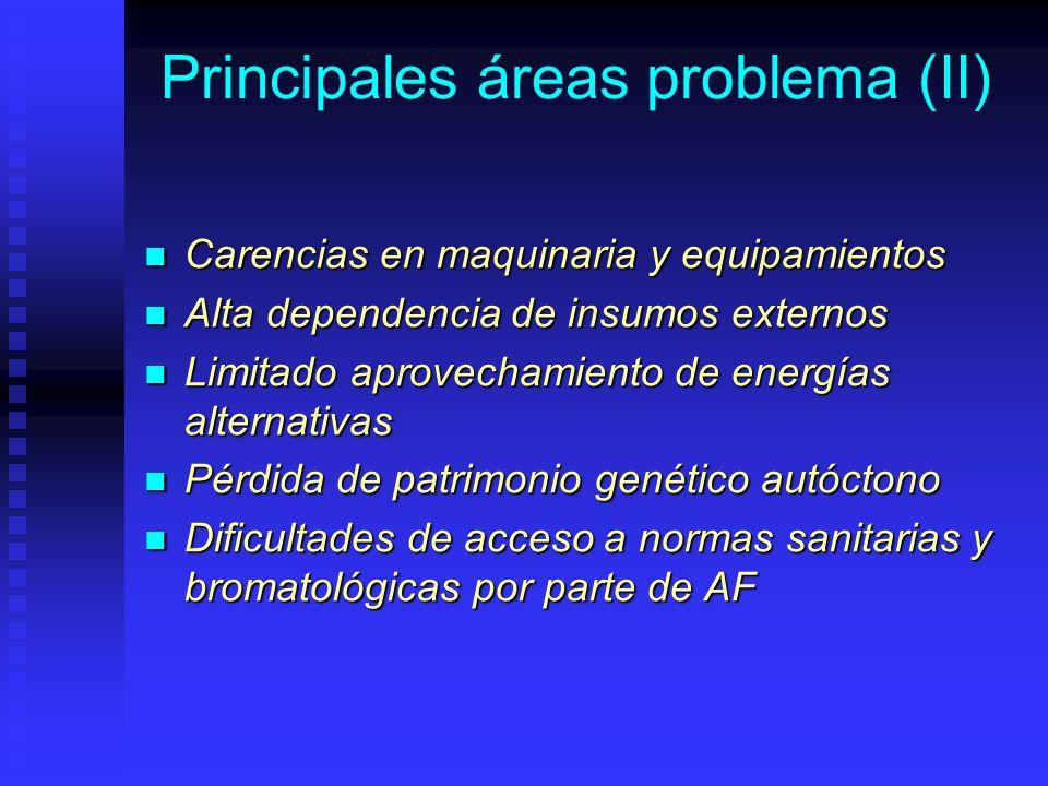 Principales áreas problema (II) Carencias en maquinaria y equipamientos Carencias en maquinaria y equipamientos Alta dependencia de insumos externos A