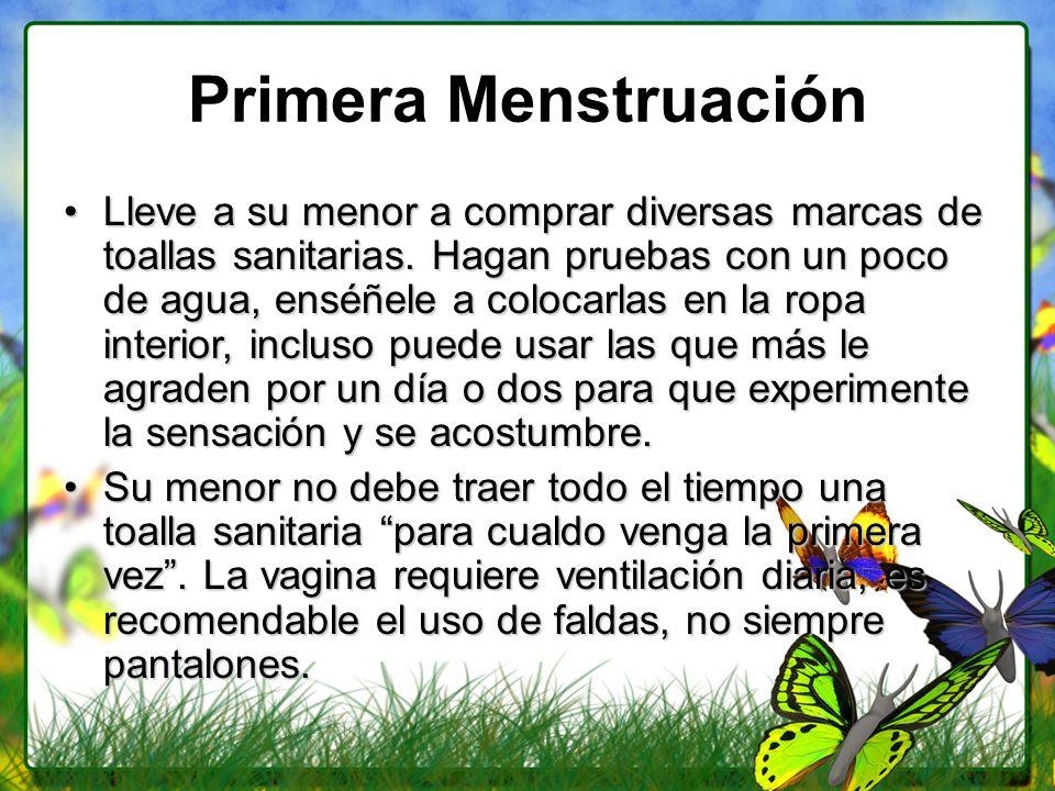 Primera Menstruación Lleve a su menor a comprar diversas marcas de toallas sanitarias. Hagan pruebas con un poco de agua, enséñele a colocarlas en la