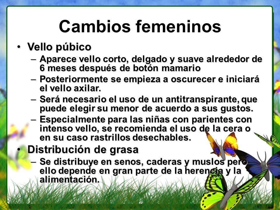 Cambios femeninos Vello púbicoVello púbico –Aparece vello corto, delgado y suave alrededor de 6 meses después de botón mamario –Posteriormente se empi