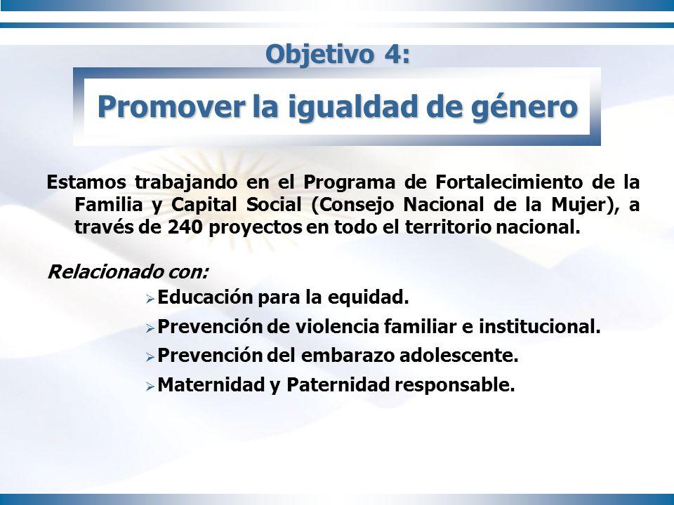 Objetivo 4: Promover la igualdad de género Estamos trabajando en el Programa de Fortalecimiento de la Familia y Capital Social (Consejo Nacional de la
