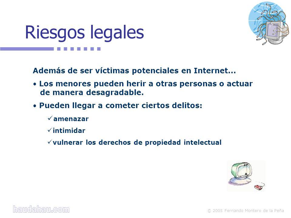 © 2005 Fernando Montero de la Peña Riesgos legales Además de ser víctimas potenciales en Internet...