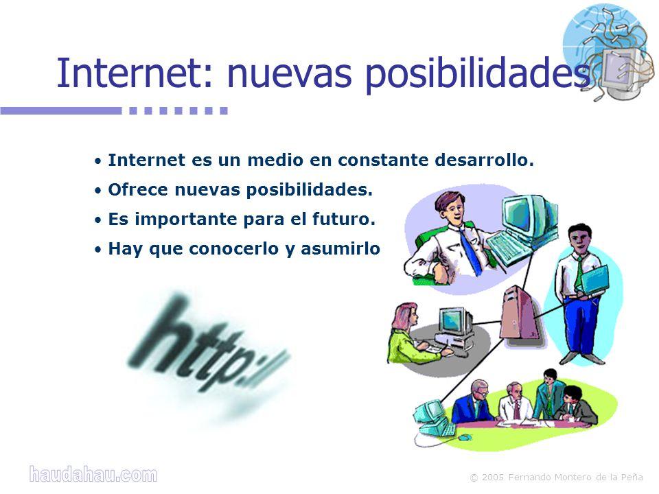 © 2005 Fernando Montero de la Peña Riesgos según los servicios Además de beneficios puede haber riesgos en: Web Chat Mensajería instantánea Correo electrónico Foros