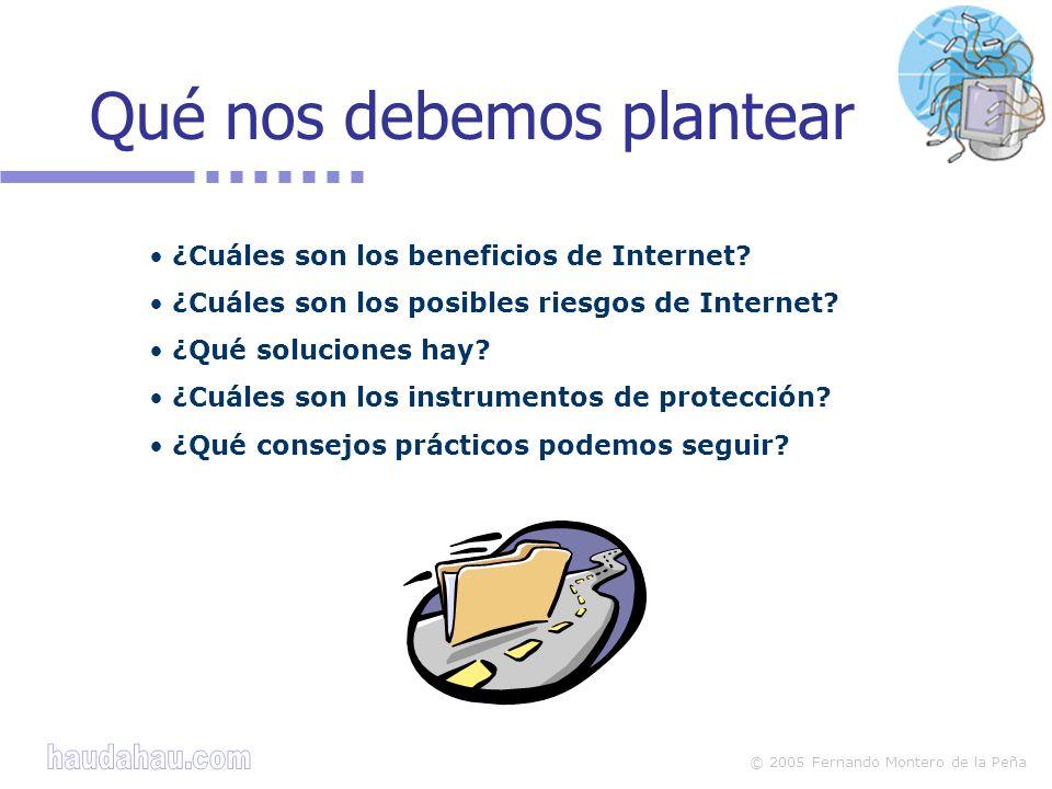 © 2005 Fernando Montero de la Peña Instrumentos de protección Programas informáticos que ayudan a proteger de los posibles riesgos.