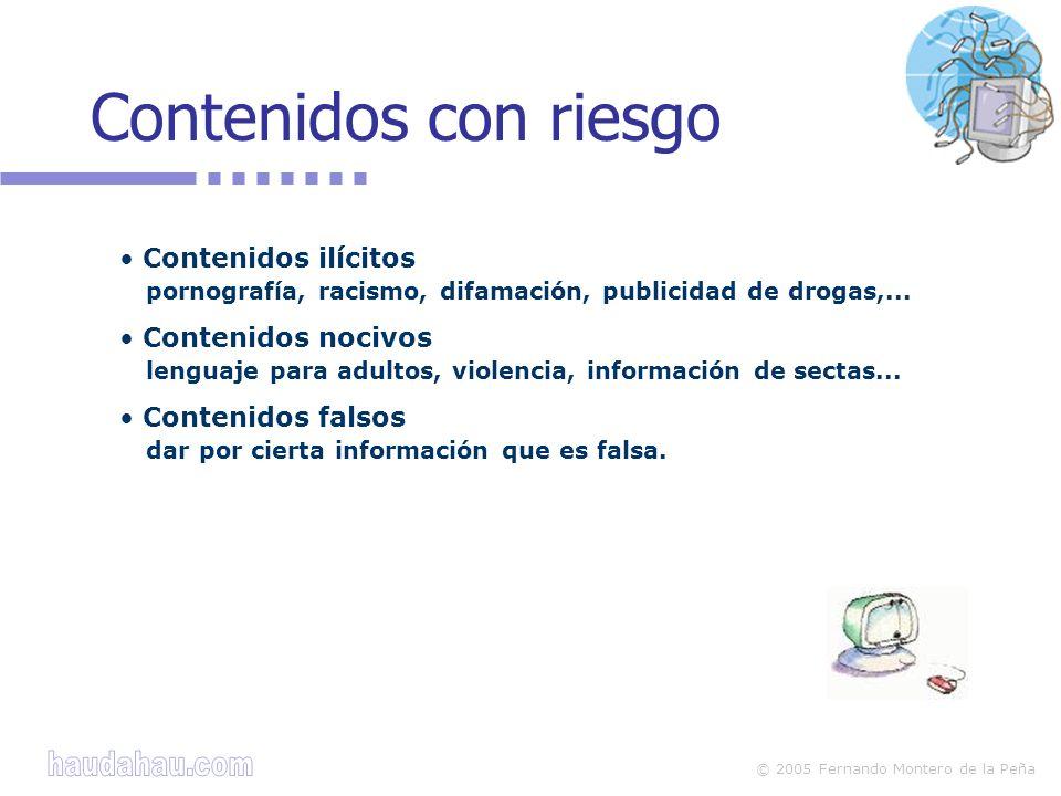 © 2005 Fernando Montero de la Peña Hay distintas áreas de contacto: chats, foros, correo electrónico, páginas web...