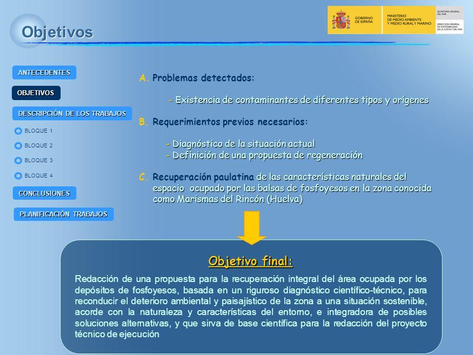 BLOQUE 2 BLOQUE 4 BLOQUE 1 BLOQUE 3 ANTECEDENTES OBJETIVOS DESCRIPCIÓN DE LOS TRABAJOS CONCLUSIONES PLANIFICACIÓN TRABAJOS Descripción de los trabajos EQUIPO DE TRABAJO TRAGSATEC Gerencia de Asuntos Marítimos y del Litoral Gerencia de Planificación Hídrica Gerencia de Ingeniería del Agua CON LA COLABORACIÓN Departamento de Química Agrícola, Geología y Edafología de la Universidad de Murcia Grupo de Trabajo Física de radiaciones y medio ambiente.