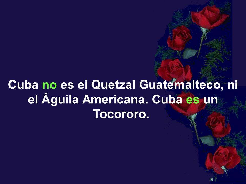 Cuba no es el Quetzal Guatemalteco, ni el Águila Americana. Cuba es un Tocororo.