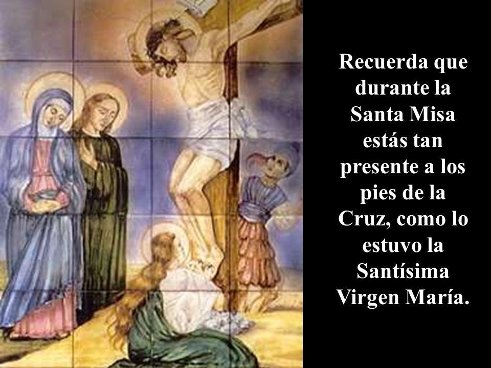 Durante la Misa te arrodillas en medio de una multitud de Ángeles que asisten invisiblemente al Santo Sacrificio con Suma Reverencia.