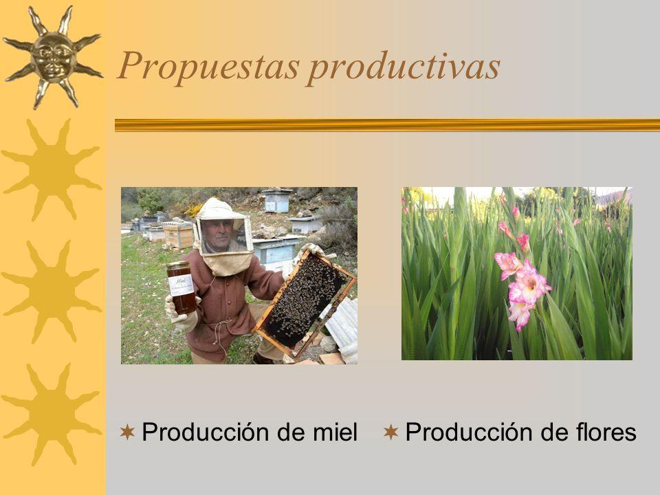 Propuestas productivas Producción de miel Producción de flores