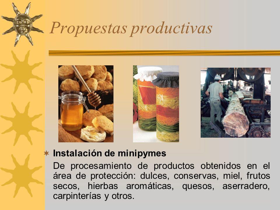 Propuestas productivas Instalación de minipymes De procesamiento de productos obtenidos en el área de protección: dulces, conservas, miel, frutos seco