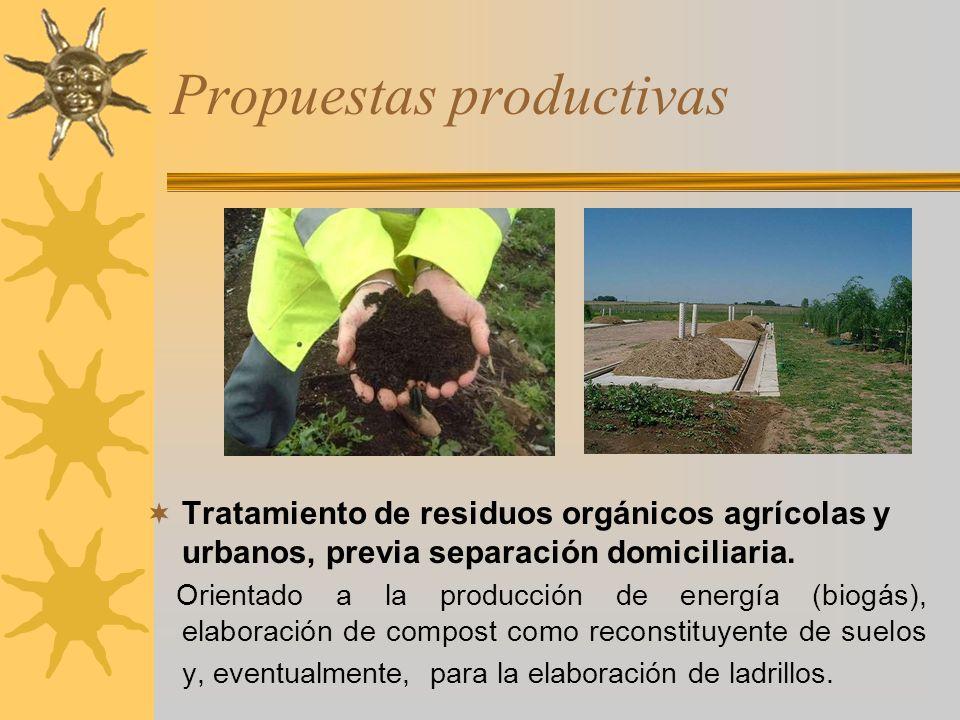 Propuestas productivas Tratamiento de residuos orgánicos agrícolas y urbanos, previa separación domiciliaria. Orientado a la producción de energía (bi