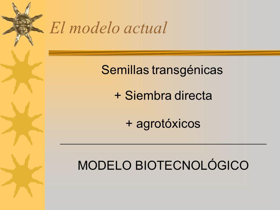 El modelo actual Semillas transgénicas + Siembra directa + agrotóxicos MODELO BIOTECNOLÓGICO _________________________________
