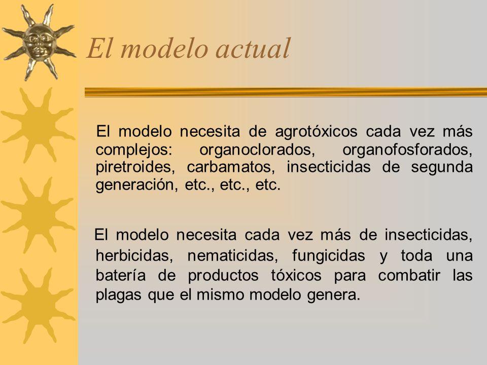 El modelo actual El modelo necesita de agrotóxicos cada vez más complejos: organoclorados, organofosforados, piretroides, carbamatos, insecticidas de