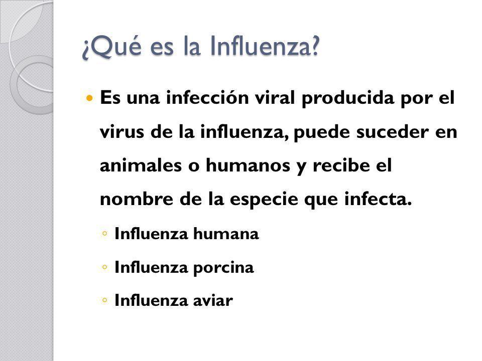 ¿Qué es la Influenza? Es una infección viral producida por el virus de la influenza, puede suceder en animales o humanos y recibe el nombre de la espe