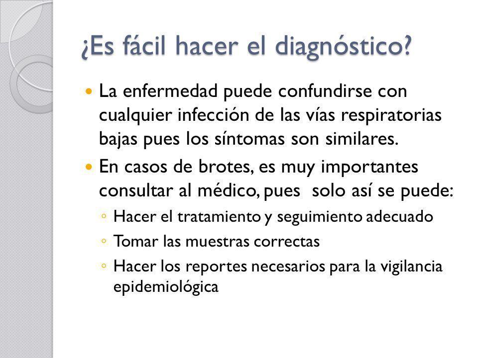 ¿Es fácil hacer el diagnóstico? La enfermedad puede confundirse con cualquier infección de las vías respiratorias bajas pues los síntomas son similare