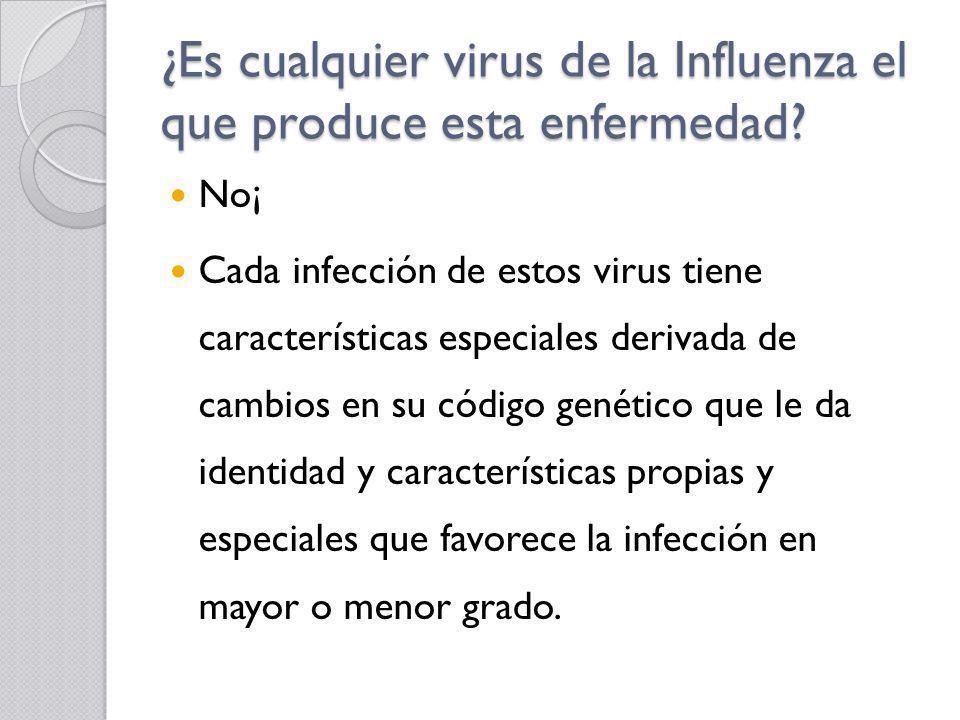¿Es cualquier virus de la Influenza el que produce esta enfermedad? No¡ Cada infección de estos virus tiene características especiales derivada de cam