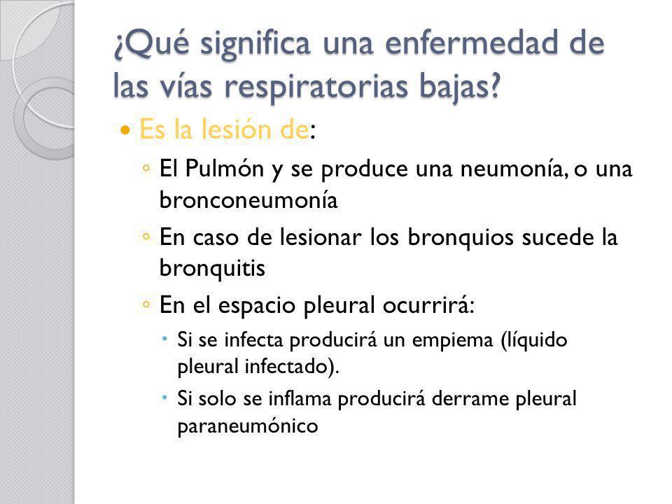 ¿Qué significa una enfermedad de las vías respiratorias bajas? Es la lesión de: El Pulmón y se produce una neumonía, o una bronconeumonía En caso de l