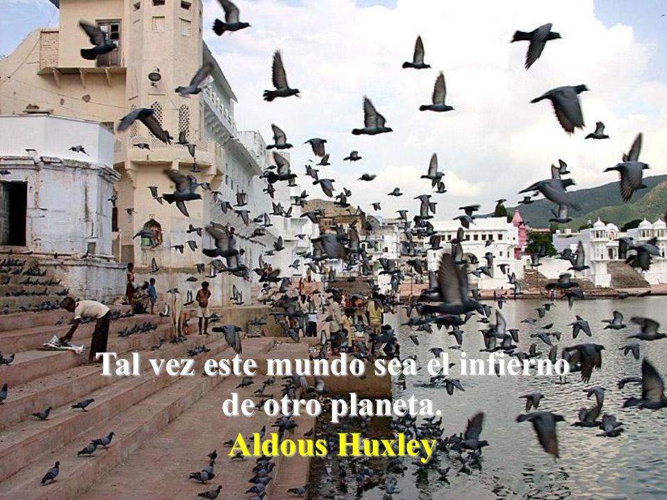 La mayoría de las personas aman a la humanidad. Es a quien vive al lado a quien no pueden soportar. Anthony de Mello
