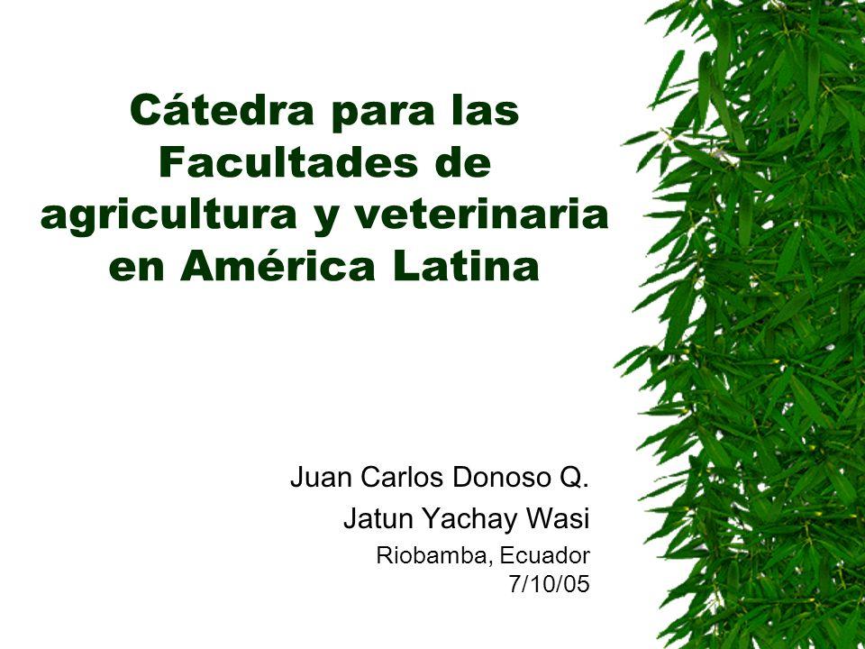 Cátedra para las Facultades de agricultura y veterinaria en América Latina Juan Carlos Donoso Q. Jatun Yachay Wasi Riobamba, Ecuador 7/10/05