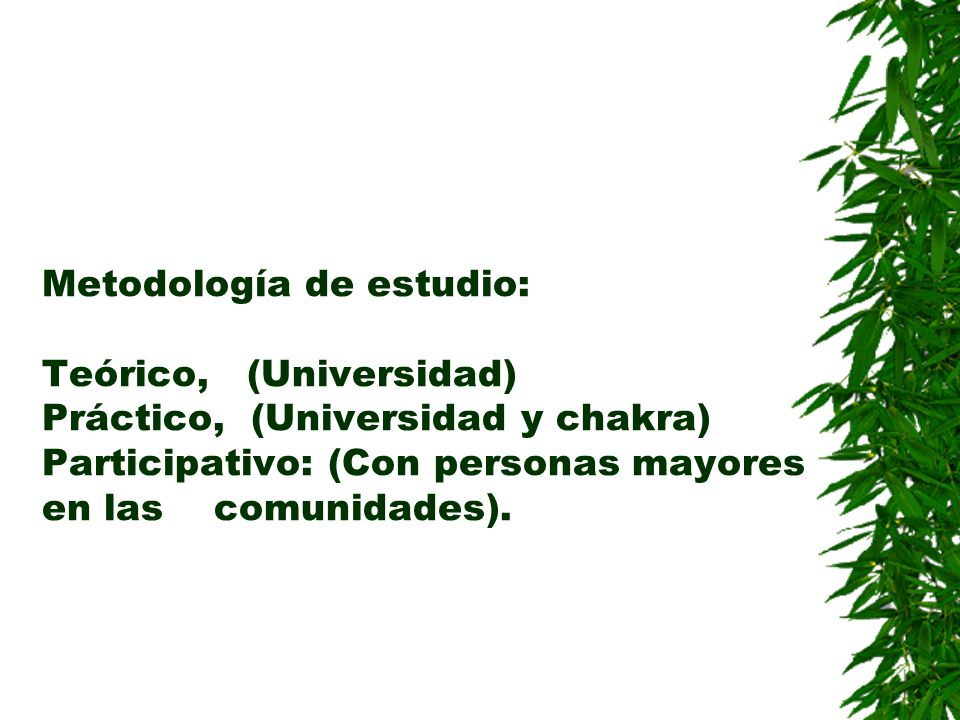 Metodología de estudio: Teórico, (Universidad) Práctico, (Universidad y chakra) Participativo: (Con personas mayores en las comunidades).