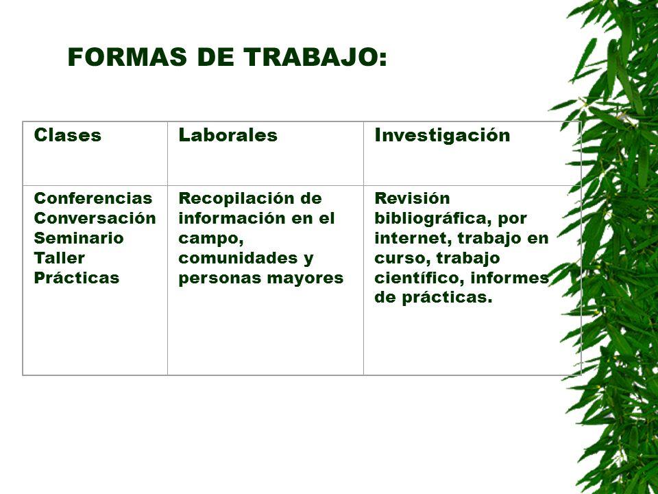 FORMAS DE TRABAJO: ClasesLaboralesInvestigación Conferencias Conversación Seminario Taller Prácticas Recopilación de información en el campo, comunida