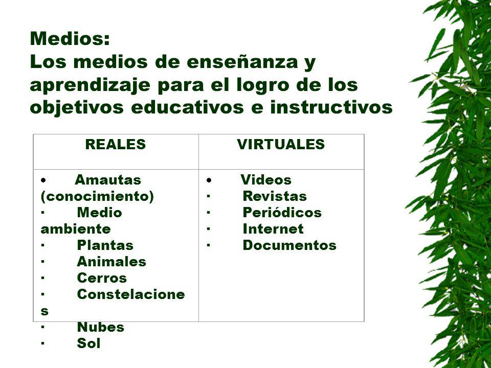 Medios: Los medios de enseñanza y aprendizaje para el logro de los objetivos educativos e instructivos REALESVIRTUALES Amautas (conocimiento) · Medio