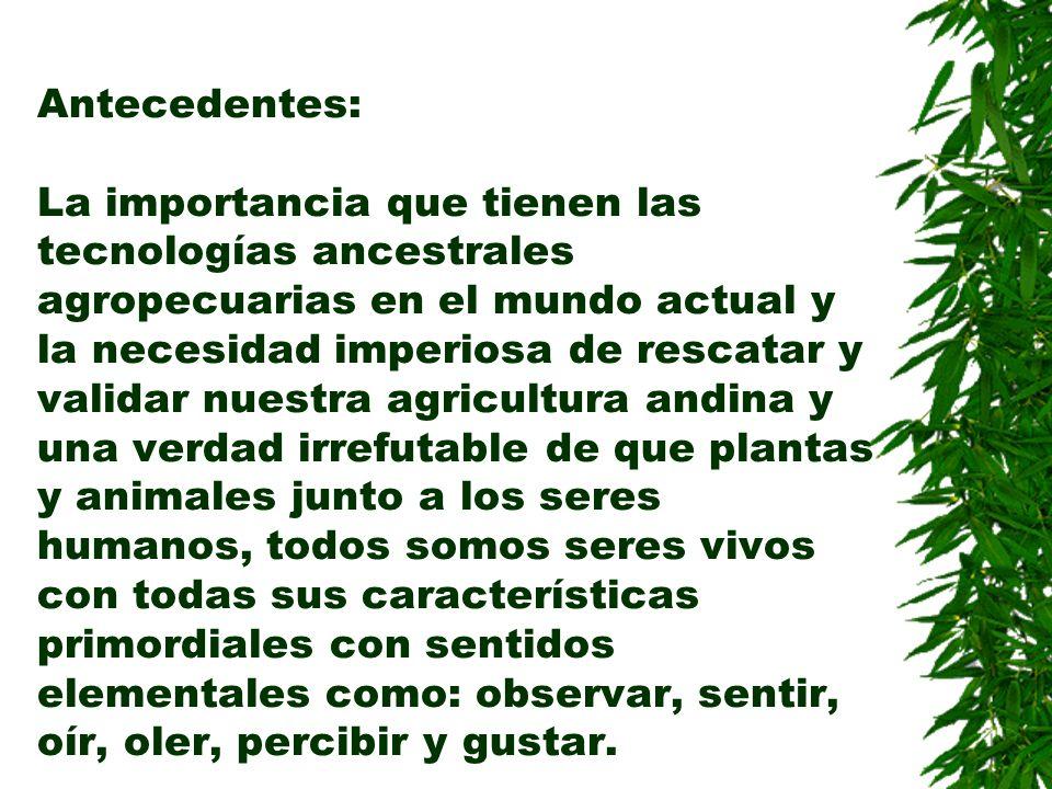 Objetivos: Rescatar y validar las tecnologías ancestrales de interpretación del Cosmos para beneficio del agricultor, el suelo, plantas, animales y los consumidores finales.