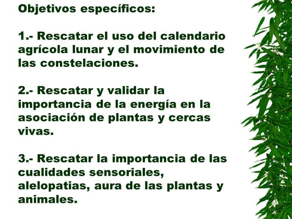 Objetivos específicos: 1.- Rescatar el uso del calendario agrícola lunar y el movimiento de las constelaciones. 2.- Rescatar y validar la importancia